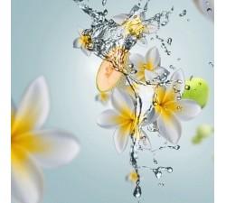 Aroma-Happy-olejek-zapachowy-maison-berger-2