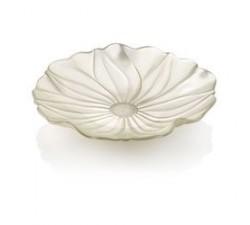 Magnolia-Pearly-Ivory-Misa-41-cm-ivv