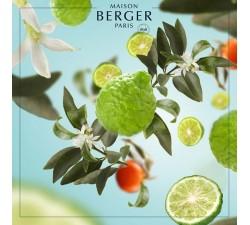Bergamotka-olejek-zapachowy-1000-ml-maison-berger-2