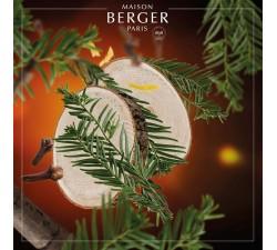 Cedr-olejek-zapachowy-Maison-Berger-2