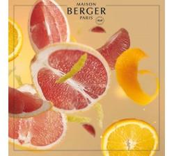 Grejpfrut-olejek-zapachowy-maison-berger