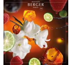 Gwiazda-orientu-olejek-zapachowy-maison-berger-2