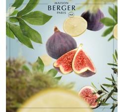 Ogrody-Riwiery-olejek-zapachowy-Maison-Berger-2