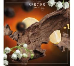 Orient-olejek-zapachowy-Maison-Berger-2