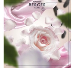 Łagodny-jedwab-olejek-zapachowy-maison-berger-2
