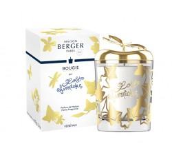 świeca-zapachowa-lolita-przezroczysta-maison-berger