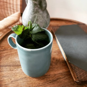 Oj w taki poranek chyba zioła pomogą... #rosenthalthomas #herbata #zioła #sypialnia #stolikkawowy #poranek #kubek